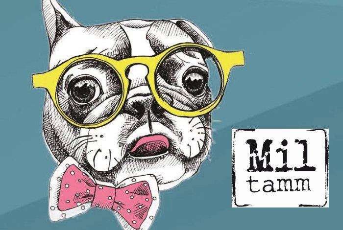 Mil Tamm : le projet culturel du Pays de Pontivy