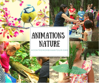 Les animations nature