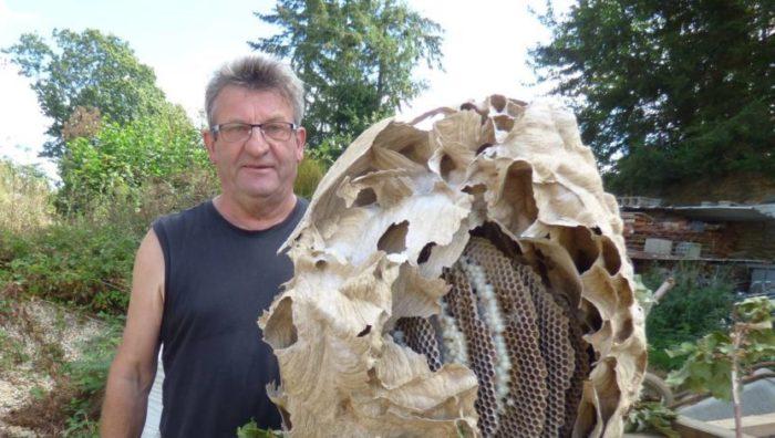 Causerie sur l'apiculture