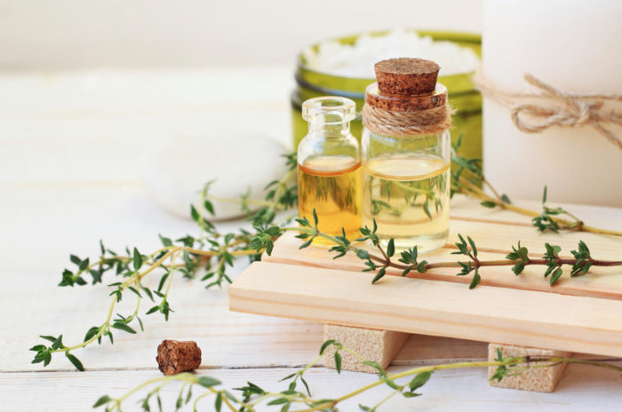 A la découverte des plantes aromatiques